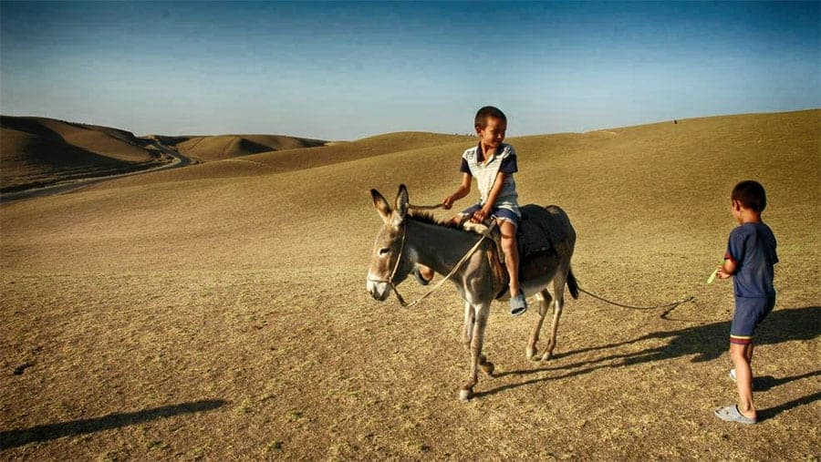 Gruppentour Usbekistan