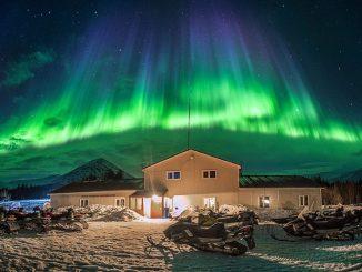 Ausflug Murmansk Kola Schlittenhunde